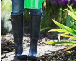 Экологичное земледелие