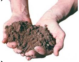 Основные принципы экологичного земледелия